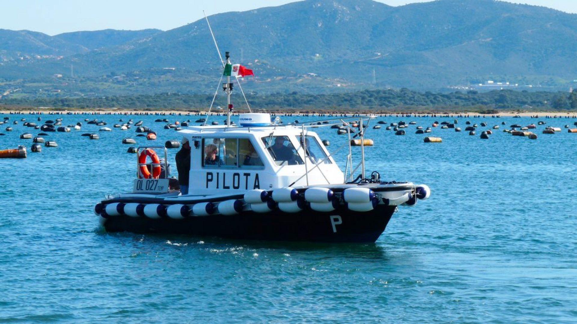 Barche da Lavoro